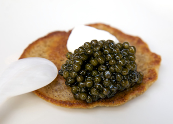 Royal Oscietra Caviar - Russian Sturgeon – Attilus Caviar